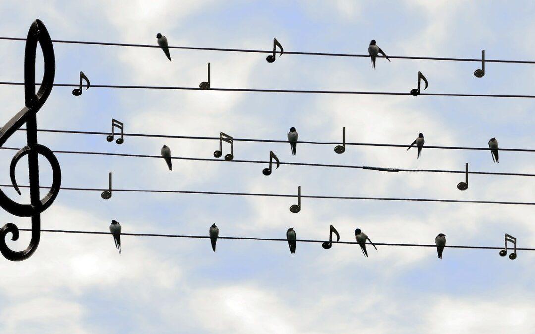 New development for online choral singing: ChoirBox